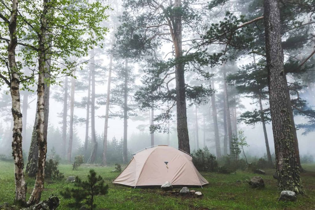 camping tent for rain and wind in the middle of the forest