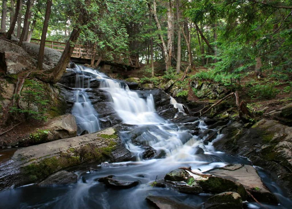 How to Test Spring Water for Drinkability